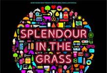 Splendour In The Grass 2016 Lineup